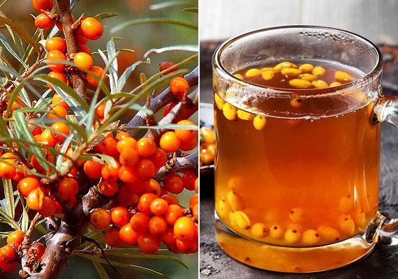 Rákellenes italok őszre: képeken 6 folyékony antioxidáns | femina.hu