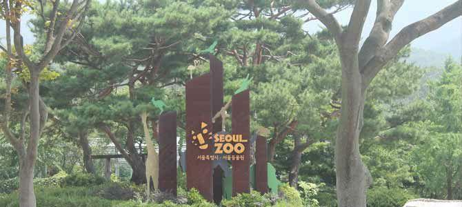 Le zoo de Séoul vaut vraiment la peine d'être visité, nous avons passé une excellente journée que nous vous racontons au sein de cet article.