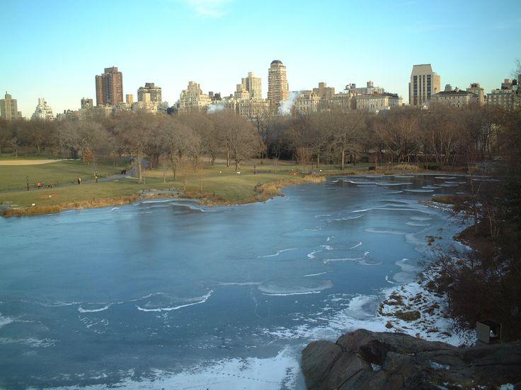 Central Park, New York, in pieno inverno, quando il lago comincia a ghiacciare ma il cielo è così azzurro...