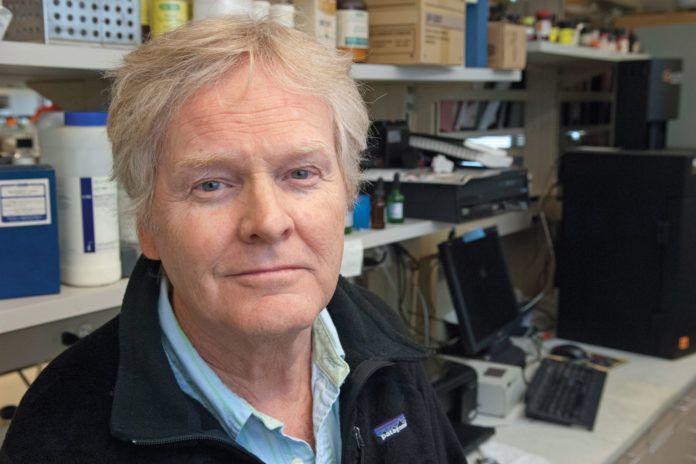 Michael W. Young | Nobel de Medicina a Michael W. Young, biólogo de la Universidad. Nobelpris i Fysiologi eller medicin 2017.