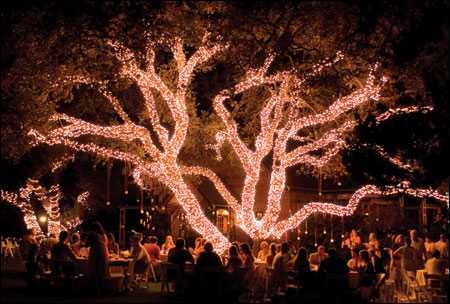 Gorgeous wedding venue in Texas