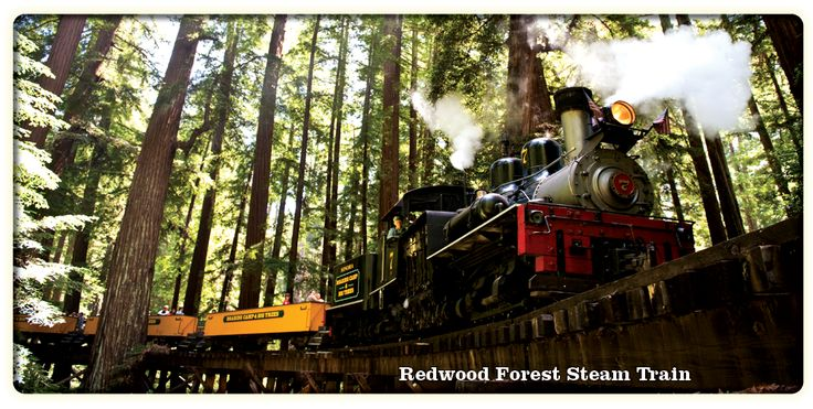 The Roaring Camp & Big Trees Narrow Gauge Railroad is a 3 ft ( mm) narrow-gauge tourist railroad in California that starts from the Roaring Camp depot in Felton, California and runs up steep grades through redwood forests to the top of nearby Bear Mountain, a distance of miles ( km).