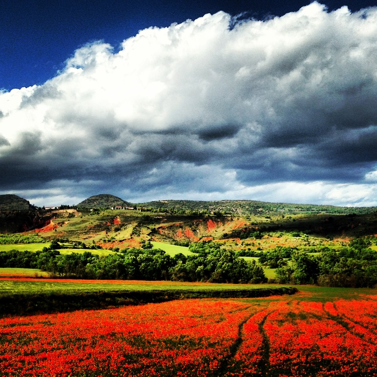 Red and green...the colors of Pallars Jussa ❤
