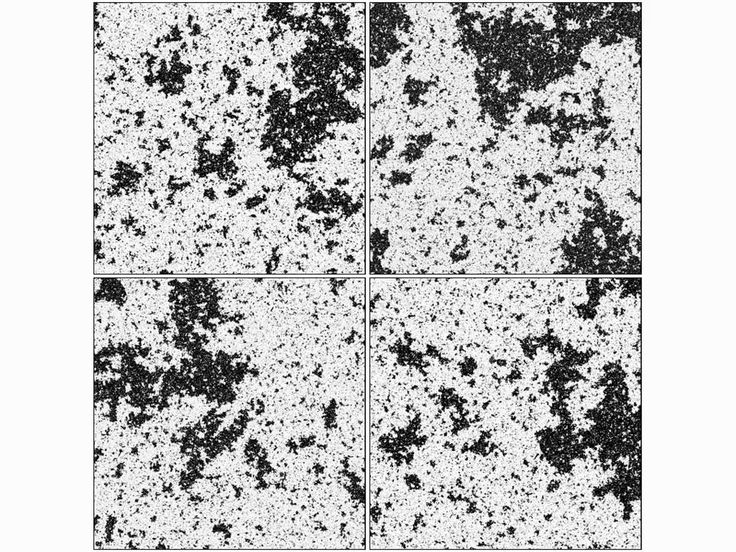 Scale invariance in the critical Ising model