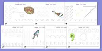 Matariki Themed Pencil Control Activity Sheets - nz, new zealand, matariki…