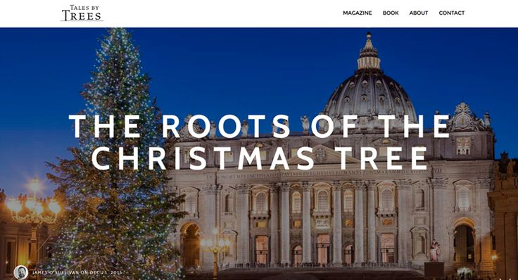 Where exactly did the Christmas tree first sprout?. A Tales by Trees article by James O'Sullivan. Read from: http://www.talesbytrees.com/the-roots-of-the-christmas-tree/
