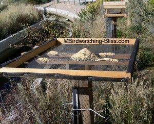 Simple platform bird feeder plans with screen floor for drainage. www.birdwatching-bliss.com/platform-bird-feeder-plans.html