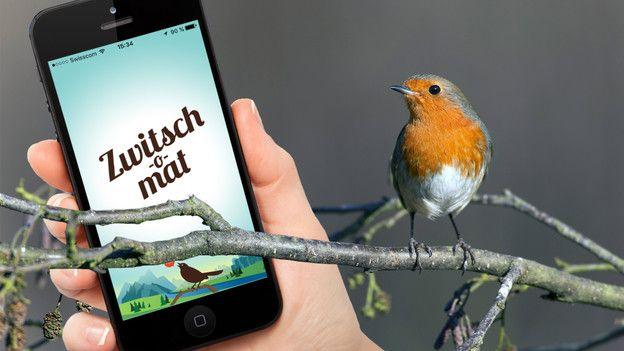 «Zwitsch-o-mat»: Mit dem Smartphone Vögel erkennen  Vögel – Die Natur ist voll von ihnen! Vogelstimmen begleiten uns durch den Alltag, doch die wenigsten von uns wissen, welches Singen zu welchem Vogel gehört. Hier kommt der «Zwitsch-o-mat» ins Spiel: eine App, die verspricht, Vogelstimmen automatisch erkennen zu können.