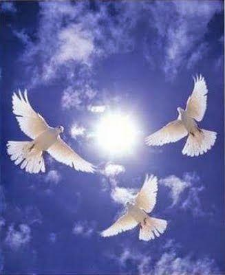 Békesség, szeretet, lélek, spiritualitás. A fehér galamb a lélek fényét szimbolizálja; reményt és tisztaságot képvisel. Állj meg most egy pillanatra és vegyél egy jó mély lélegzetet, figyeld meg mi történik a testedben. Ez az, amit most tenned kell, az a sok minden után, amin keresztülmentél az utóbbi időben. A lélegzés hazahoz a testedben, a lelkedben; elhoz oda, ahol hallod a szíved dobbanását, a lélegzésed ritmusát; és biztosít arról, hogy most már minden rendben van. Most már nem kell…