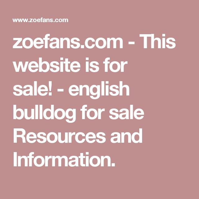 zoefans.com-This website is for sale!-english bulldog for sale Resources and Information.