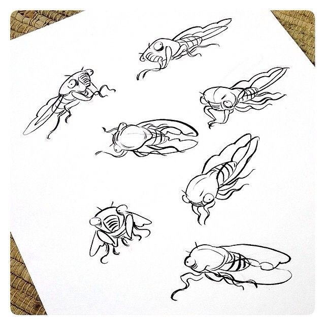 a look at the mysterious insect the cicada It's like rip van winkle for insects democracy dies in darkness sections home subscribe try 1 month for $1 a look back at cicada invasions in the.