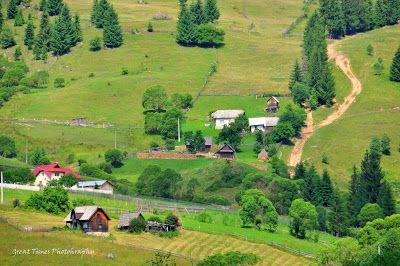 Ortoaia is a village in Suceava County, Romania. It is part of the commune of Dorna-Arini.https://greattimesphotography.blogspot.ro/2016/10/ortoaia-suceava.html
