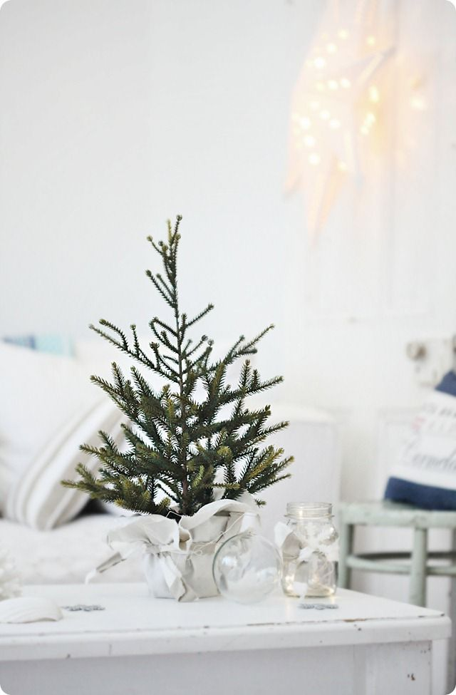 1000 ideas about coastal christmas decor on pinterest. Black Bedroom Furniture Sets. Home Design Ideas