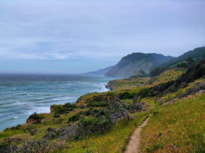 The 11 Most Spectacular State Parks In Northern California You Need To Visit