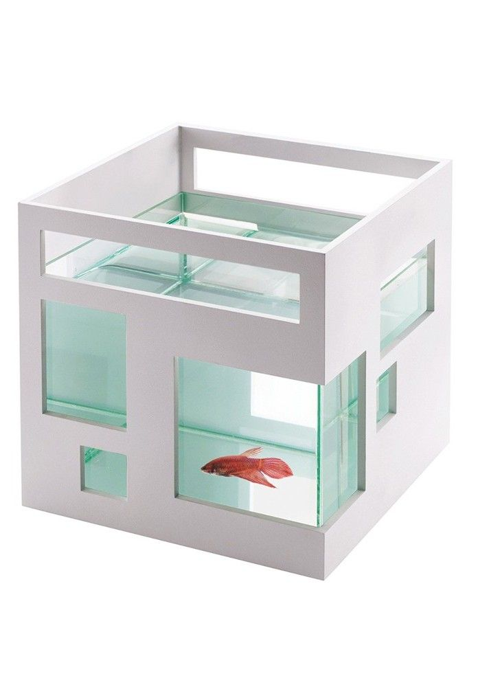 Fish Apartment Is dit niet de ideale viskom voor een architect ?