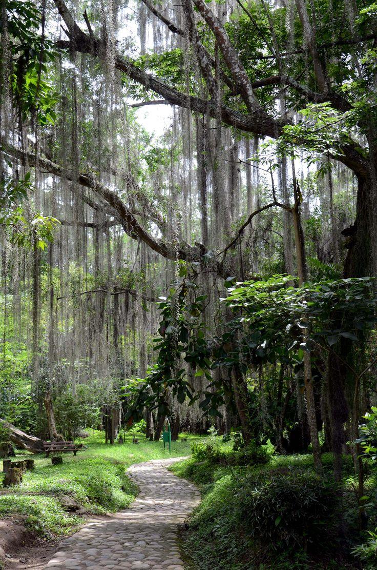 """El Gallineral"" Natural Park in San Gil, Santander, Colombia. Wonderful scenery awaits you."