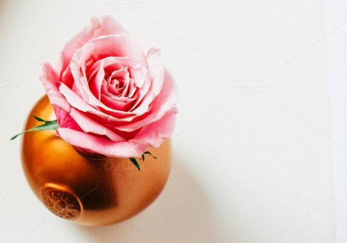 Blush pink Roses Gold Vase I Styled  - Business