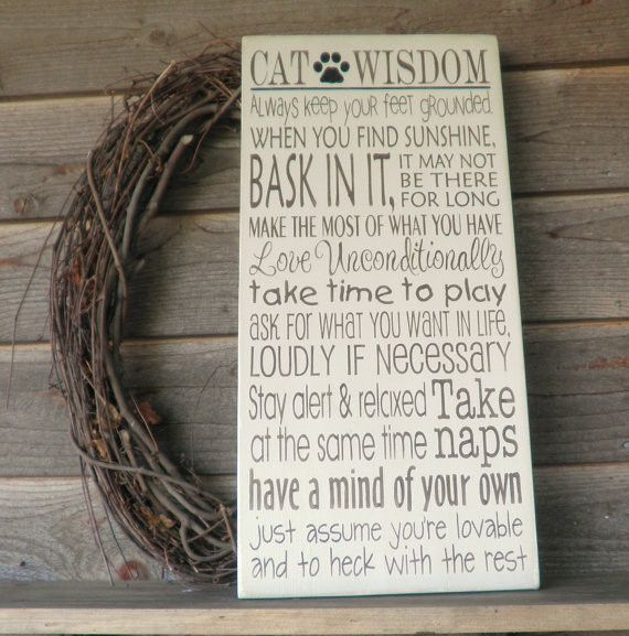 funny cat sign, funny pet sign, cat wisdom, primitive home decor,rustic home decor, distressed sign, hand painted sign, wood signs