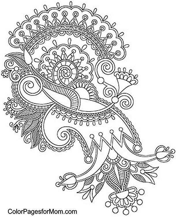 Paisley Peacock Coloring Pages For Adults Printable Sketch ...