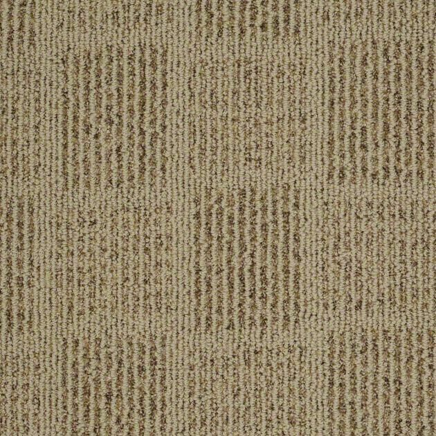 1000 images about carpet on pinterest carpets outdoor Belmont carpets and wood flooring