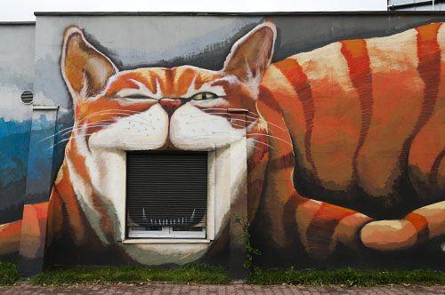 Wrocław, Poland: Cat Art, Art 000, Cheshire Cat, Murals Poland, Streetart Wrocław, Street Art Cat, Le Memes, Art Street, Con Art
