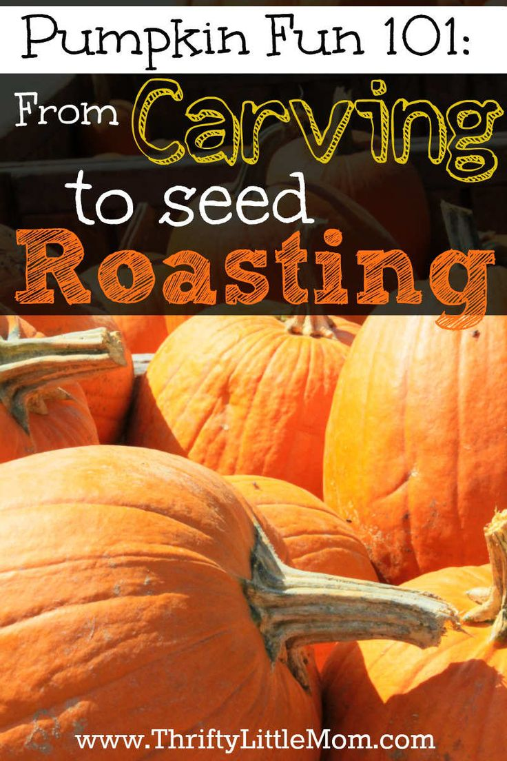 Pumpkin Fun 101: From Carving to Seed Roasting! http://thriftylittlemom.com/2013/10/23/pumpkin-fun-101from-carving-to-seed-roasting/