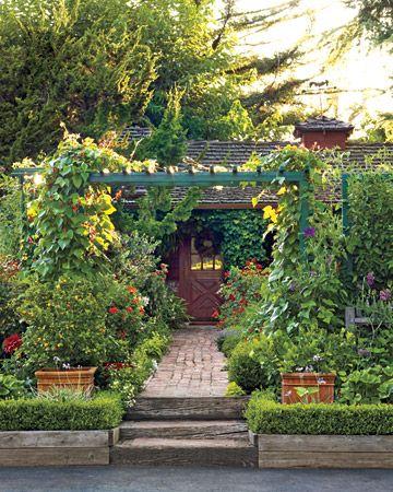 25+ Best Edible Garden Ideas On Pinterest | Flowers By Post Uk