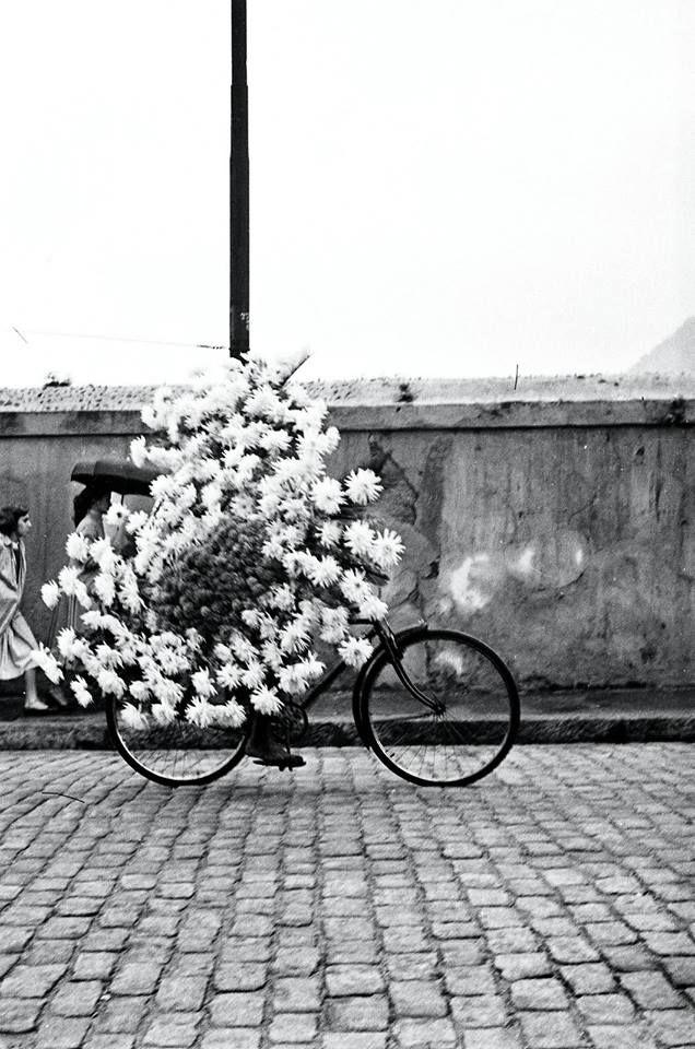 Dit kan een fiets zijn waarmee er reclame gemaakt word voor een bloemenwinkel