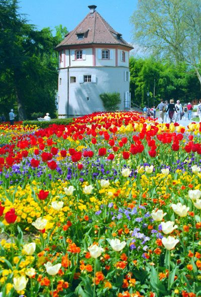 Isle of Mainau - Bodensea, the gardens are so beautiful