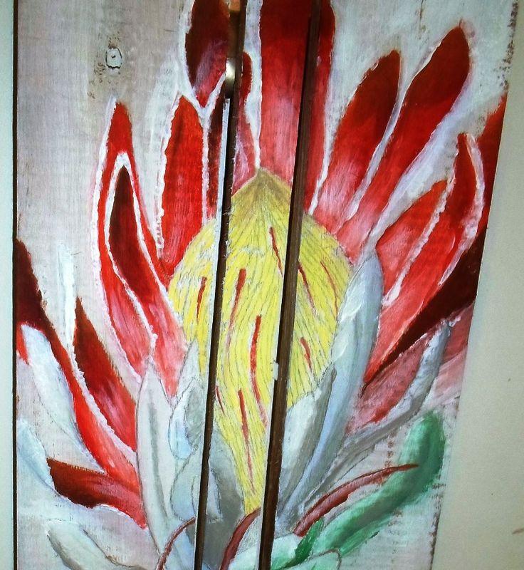 Protea Close Up