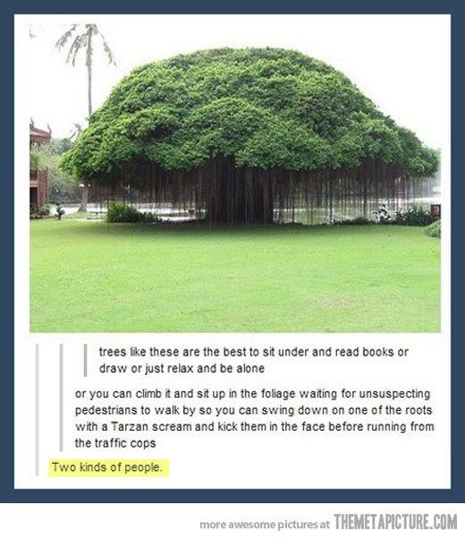 I laughed pretty hard.