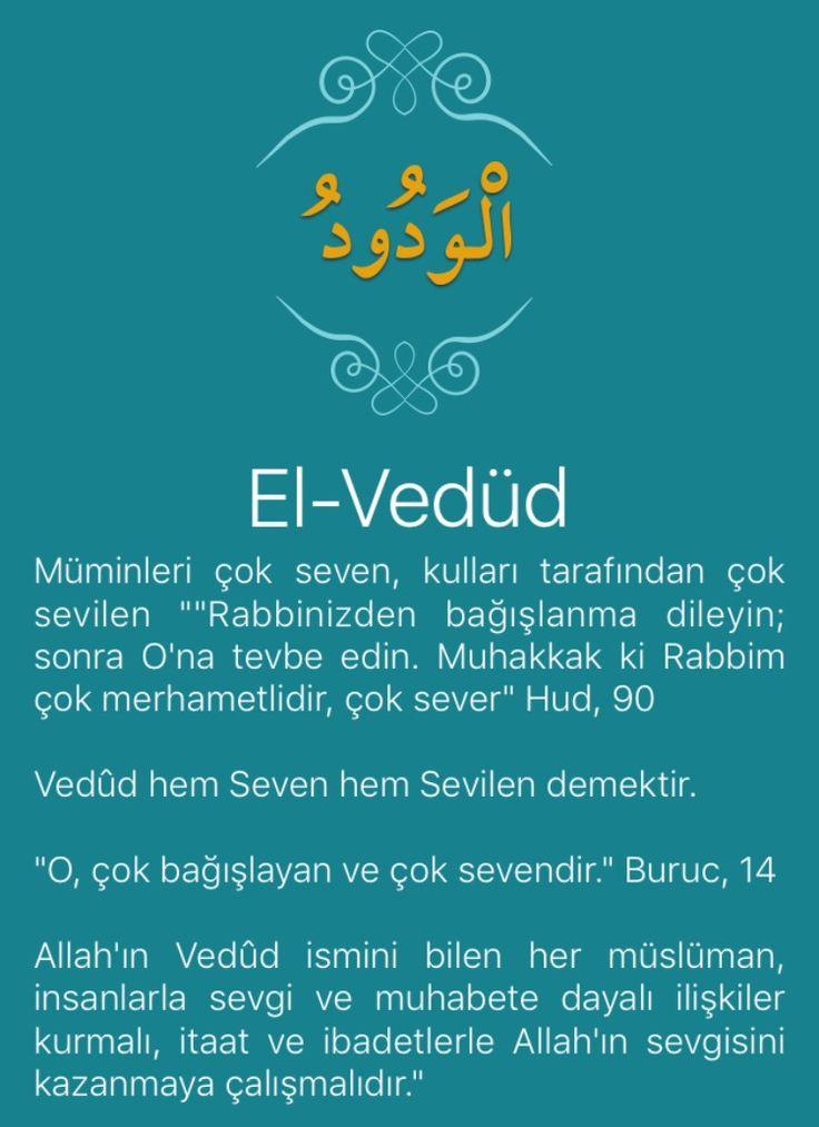 """Müminleri çok seven, kulları tarafından çok sevilen """"""""Rabbinizden bağışlanma dileyin; sonra O'na tevbe edin. Muhakkak ki Rabbim çok merhametlidir, çok sever"""" Hud, 90   Vedûd hem Seven hem Sevilen demektir.   """"O, çok bağışlayan ve çok sevendir."""" Buruc, 14   Allah'ın Vedûd ismini bilen her müslüman, insanlarla sevgi ve muhabete dayalı ilişkiler kurmalı, itaat ve ibadetlerle Allah'ın sevgisini kazanmaya çalışmalıdır."""""""