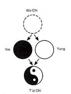 Yin e Yang: il sistema nervoso autonomo