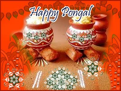Pongal Festival celebrates in India on every mid of January.