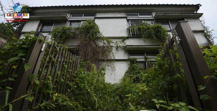 Devido ao alto número de casas abandonadas no Japão, algumas cidades e províncias estão oferecendo até ¥4 milhões de ajuda aos proprietários. Saiba mais.