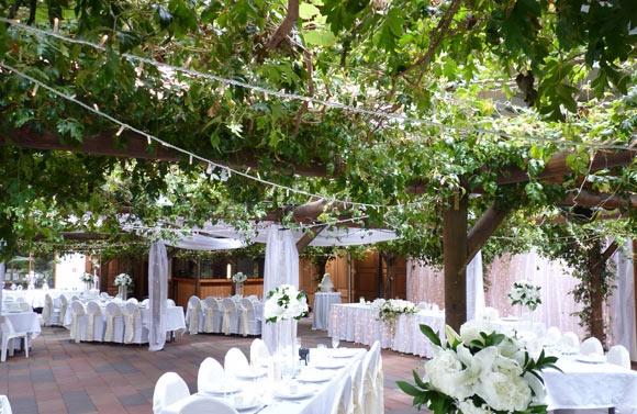 Wedding Reception Decorations Auckland : Markovina vineyard estate auckland nz kelly joll