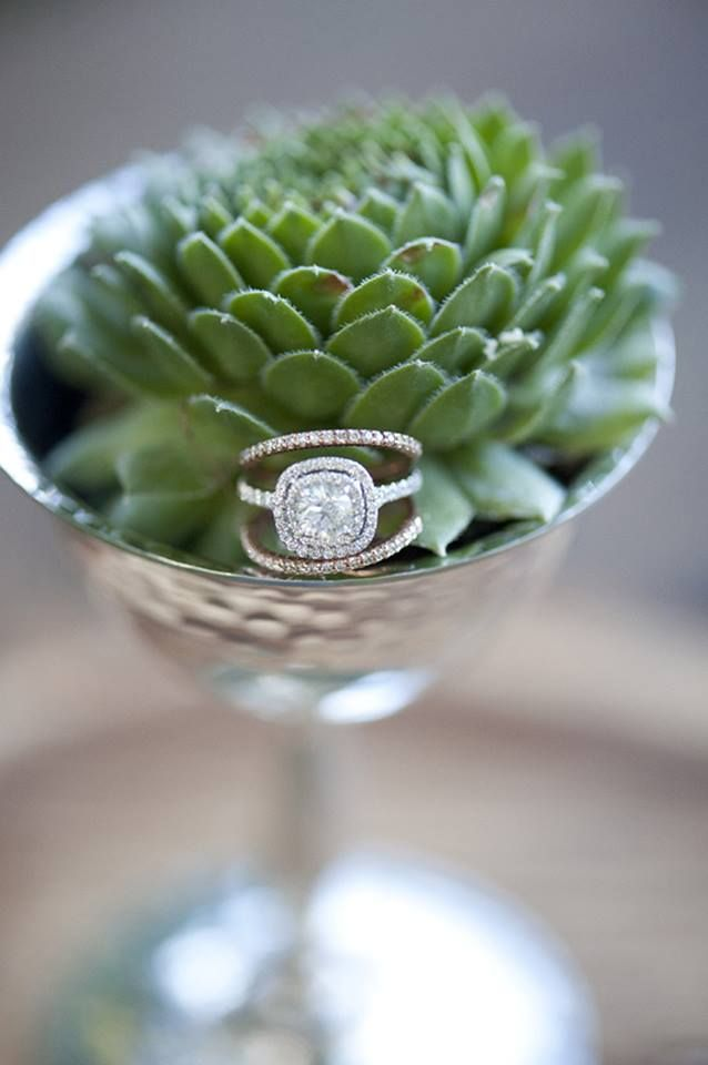 #wedding ring + #engagement ring. Blair Marie Photography.