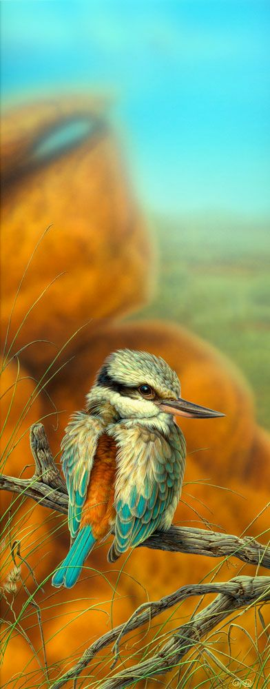 """""""Red-backed Kingfisher"""" - artwork by Christopher Pope - now available as fine art reproductions - http://www.artreproductions.com.au/gallery.php?artid=2360"""