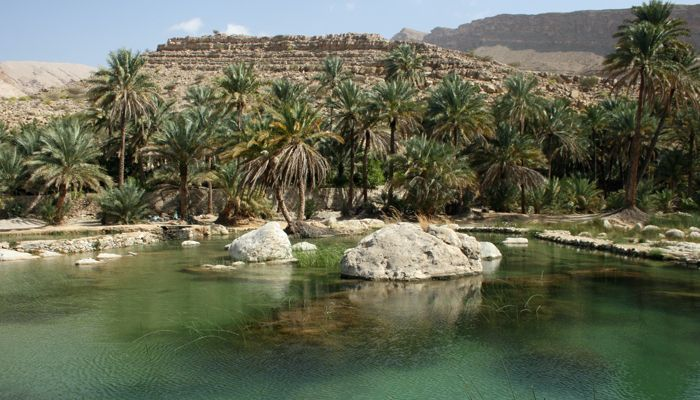 Wad im Oman - read the story: http://www.kofferpacken.at/asiendetail/items/Oman-Maskat-Muscat-Souk-Sultan.html