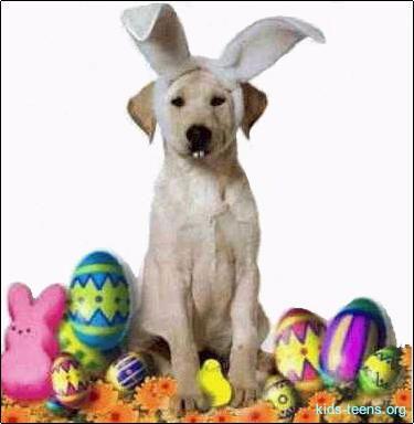 30 best hoppy easter easter ideas for dogs images on pinterest cele mai frumoase mesaje de pate foto iepurai easter negle Images