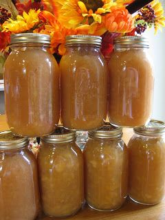 Homemade Chunky Applesauce Recipe...fabulous for fall!