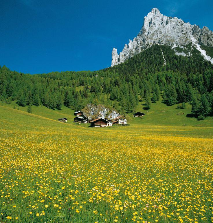 Val Canali, Primiero Valley, Trentino. A wonderful landscape!