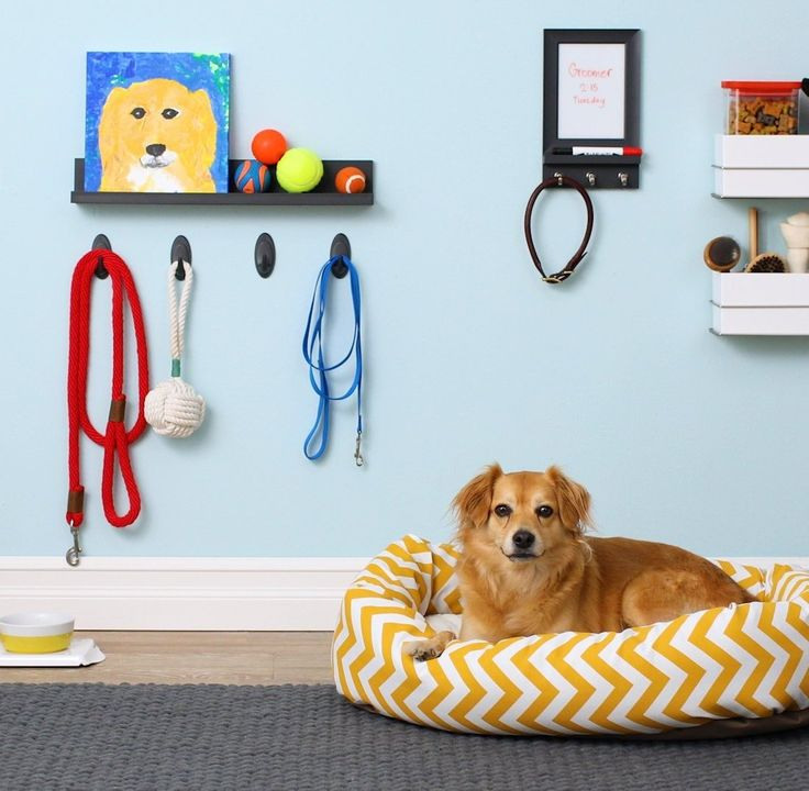 If Youu0027re Looking For Pet Organization Ideas In A Small Space, Think  Vertically