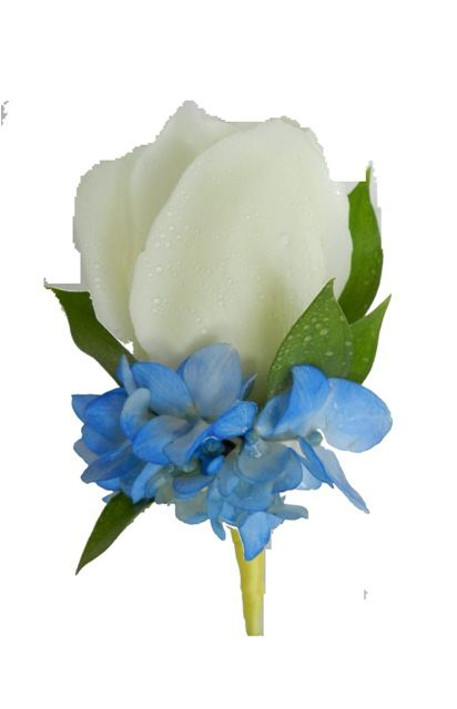 ... rose with blue hydrangea boutonniere...we could make these, Shelb Blue Hydrangea Boutonniere