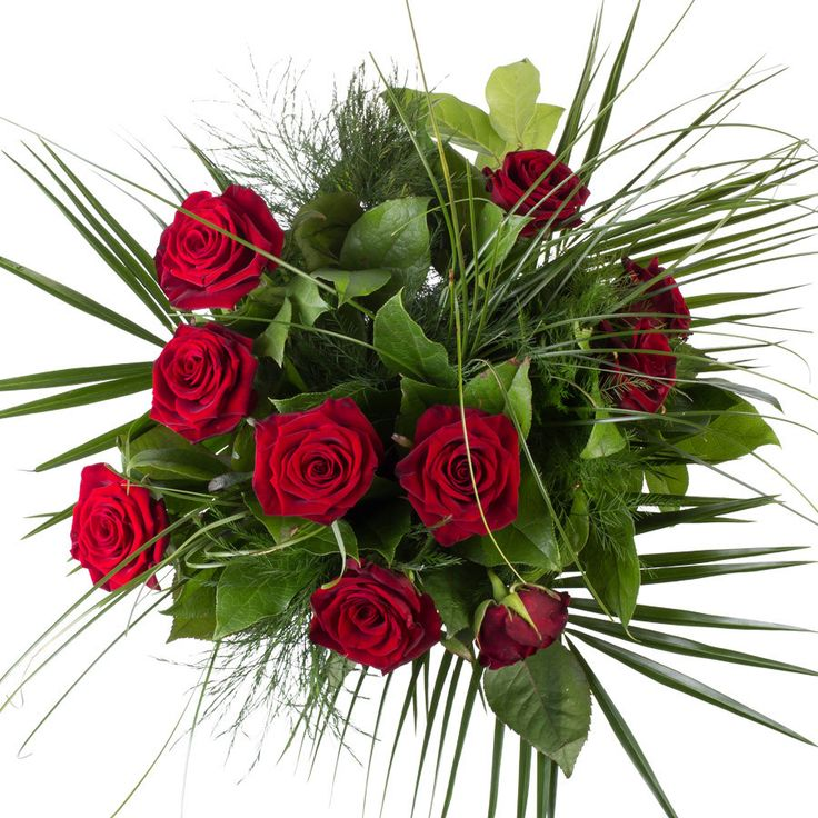 Rode rozen het symbool van de liefde!