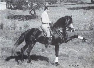 La passion de l'Art Equestre: Nuno Oliveira