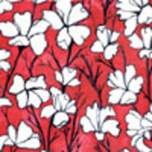 Laura Gunn - Cosmos - Daylilies in Cream