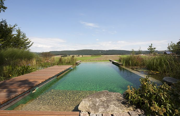 Natural/Living Pool #1 on my list of things to do at the Farm! ;o) (Must have one 25+ yard lane for laps Per Mike!)