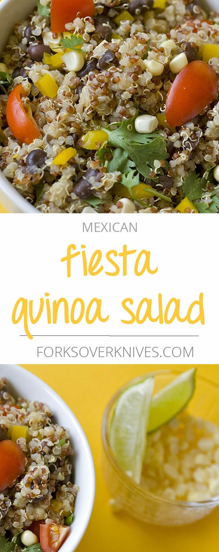Now that summer has arrived my favorite quick-cooking grain to eat is quinoa. We use seasonal summer produce to make this salad nutrient-packed! This Mexican-inspired quinoa dish uses both regular and red quinoa for added texture and beauty. If you...  Read more