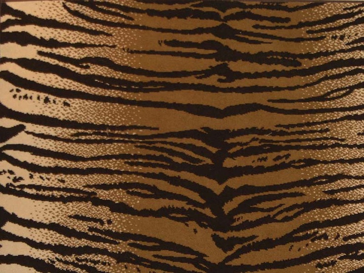 1000 Images About Wild For Animal Prints On Pinterest